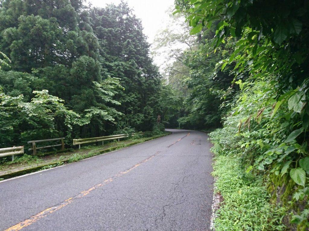 路面状況が悪く濡れている峠道