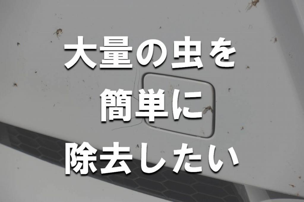 虫取り_除去_サムネ
